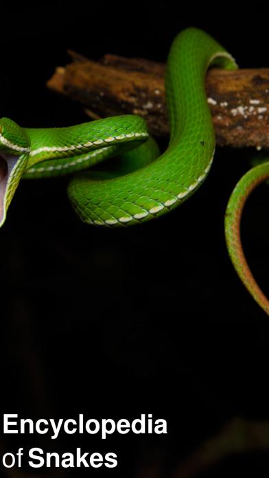 点击获取CHI Encyclopedia of Snakes