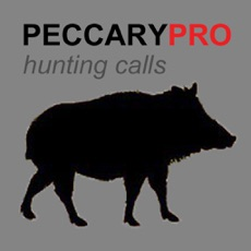 Activities of REAL Peccary Calls and Peccary Sounds for Hunting Call