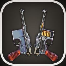 Gun Works Pro for Works, open gun, gun theory