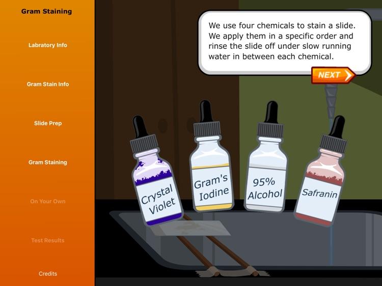 Virtual Labs: Gram Staining screenshot-3