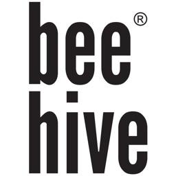 Bee Hive Jesle Skolka Skola