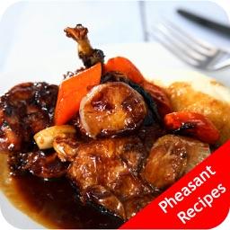 Pheasant Recipes - Braising Venison