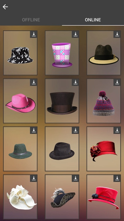 Hats Photo Montage screenshot-4
