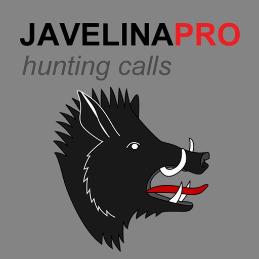 REAL Javelina Calls & Javelina Sounds to use as Hunting Calls (ad free) - BLUETOOTH COMPATIBLE