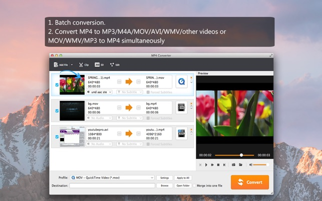 ‎MP4 Converter- Video to MP4