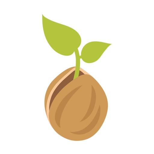 Walnut Health