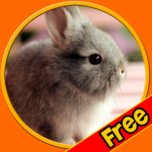 friendly rabbits for kids free