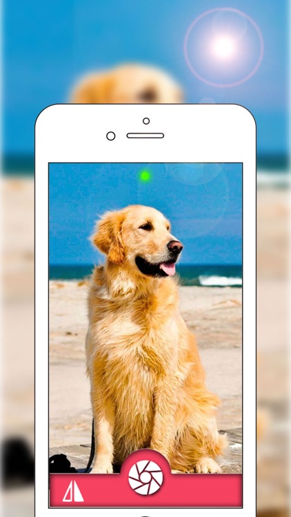 Live Wallpapers Cam - Make Your Video to Live Wallpapers For iPhone 6s and 6s Plus