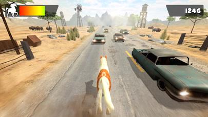 Little Pony Horse Riding   My Juegos de Caballos de Carreras GratisCaptura de pantalla de5