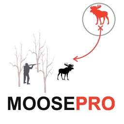 Moose Hunting Strategy Moose Hunter Plan