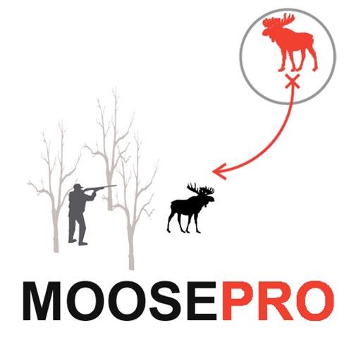 Moose Hunting Strategy Moose Hunter Plan