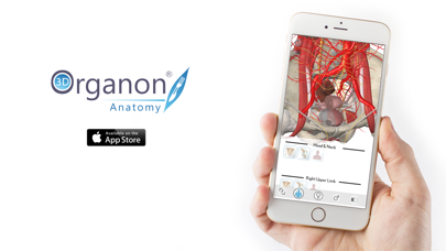 3D Organon Anatomy - Reproductive and Urinary Systems screenshot four