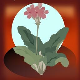 Seed Tracker, Organizer & Gardening Milestones