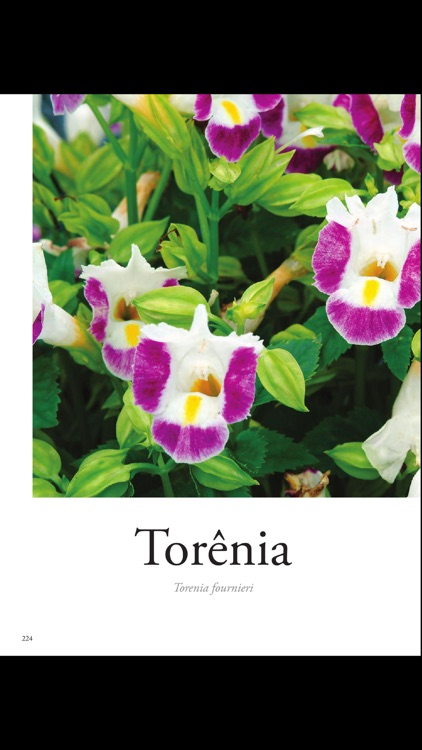 Plantas Ornamentais - Volume 3 screenshot-4