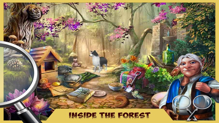 The Enchanted Forest - Adventure Of Forest