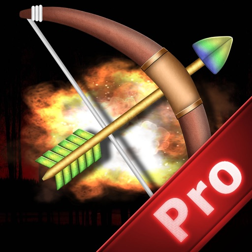 A Revenge Of Arrow And Bow Pro - Best Cup Archery