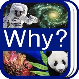 Why? 과학