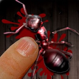 Ant Killer Free Game by the Best, Cool & Fun Games