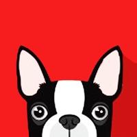 Boston Terrier Emoji: Puppy Stickers for iMessage App