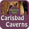 Carlsbad Caverns National Park , USA