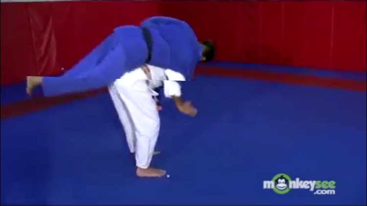 Judo Academy screenshot-2