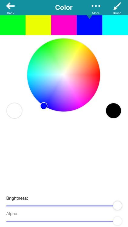 Meritum Paint Pro