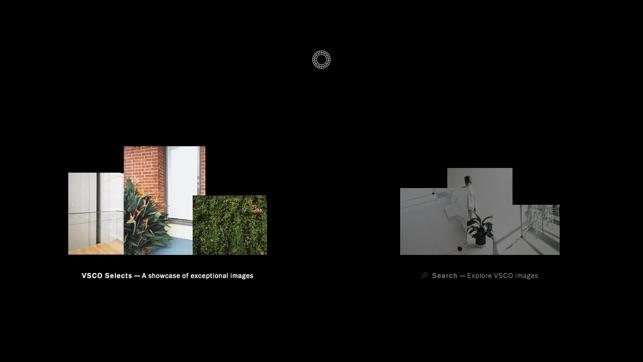 VSCO: Foto- und Video-Editor Screenshot