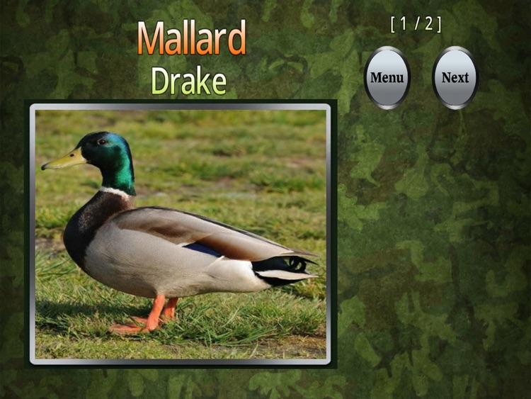 """Duck ID """"For iPad"""""""