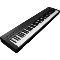 Codes for Electric Piano Pro HD Hack