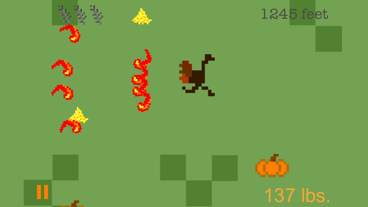 Turkey Chase - A Thanksgiving Fun Run screenshot-2