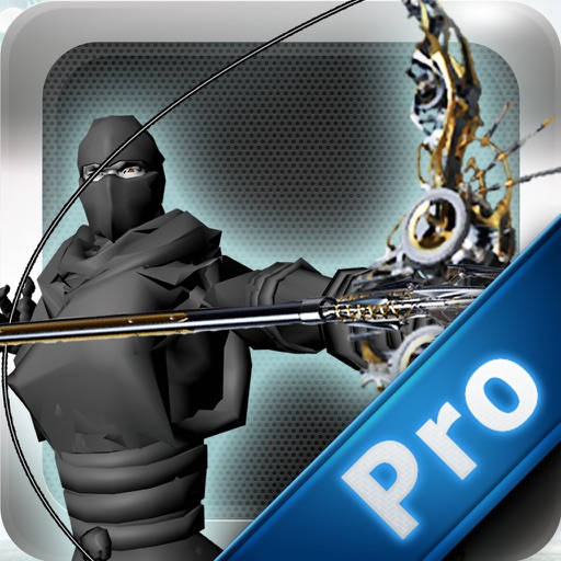 Ninja Arrow Pro : Legend Of The Ancient Dragon The Temple Tour