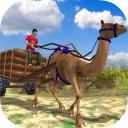 Camel Cart Rider