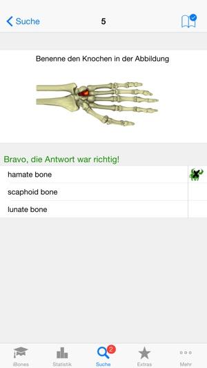 iBones - Skelett Knochen lernen im App Store