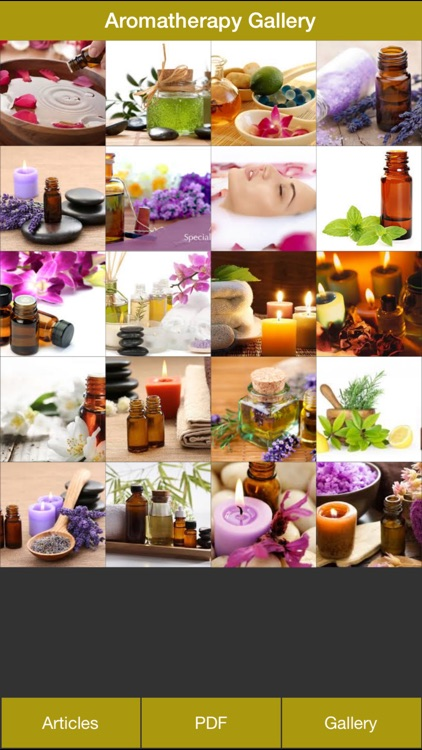 Aromatherapy Guides - Everything You Need to Know About Aromatherapy
