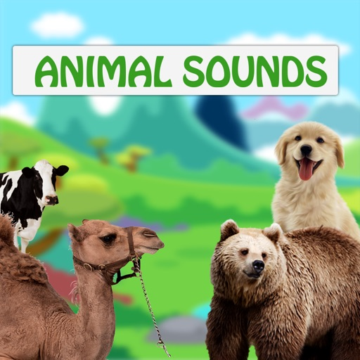 Animal Sounds for babies and children