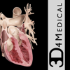 Heart Pro III - 3D4Medical.com, LLC