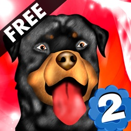 Dog Agility 2 : The dressage race contest - Free