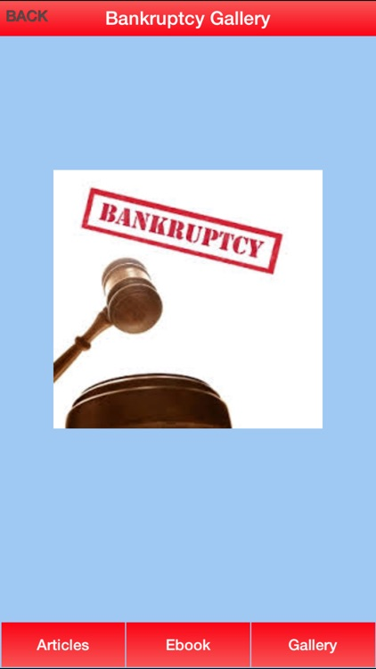 Bankruptcy Guide - Everything You Need To Know After Bankruptcy screenshot-3