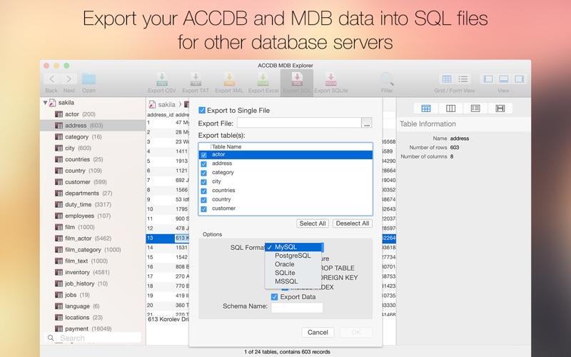 ACCDB Explorer Screenshot