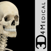Skeletal System Pro III - 3D4Medical.com, LLC
