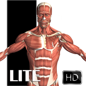Visual Anatomy Lite Medical app