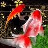 桜金魚すくい