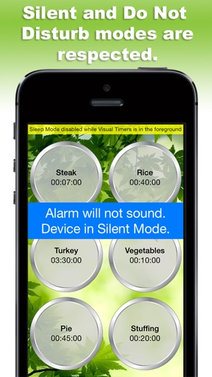 do not disturb iphone alarm visual timers on the app 16864