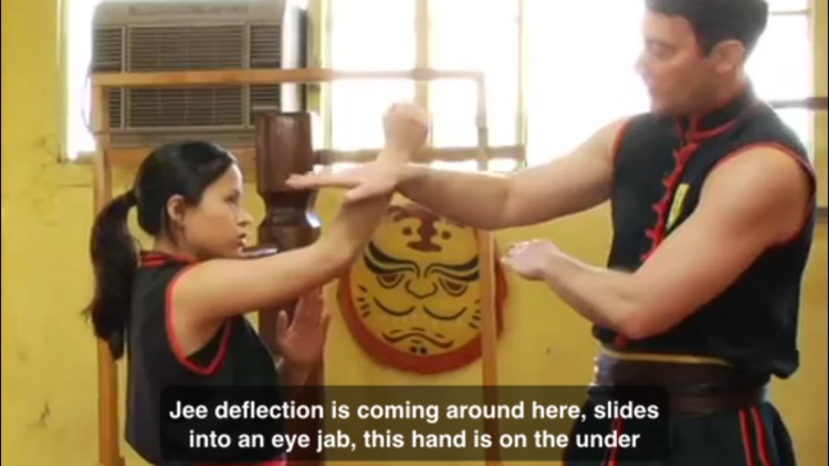 Wing Chun Techniques screenshot-3