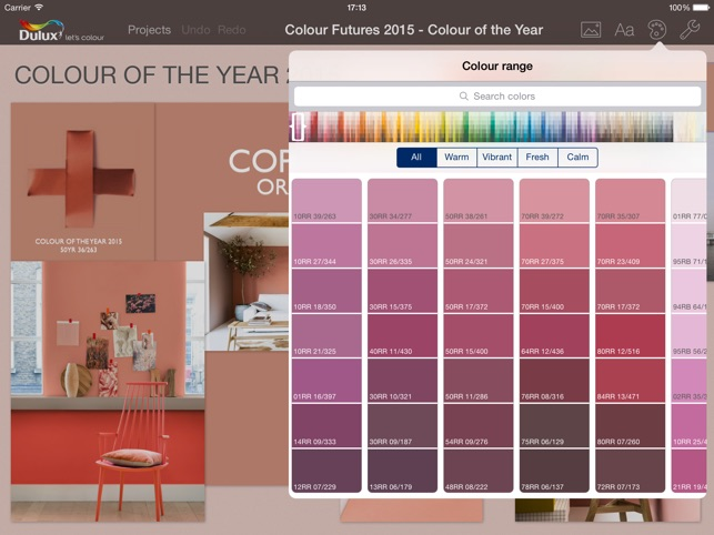 Dulux Paint Software