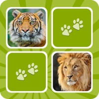 Codes for Animal Memory Matching Games for kids Hack