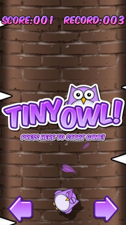 Tiny Owl FREE