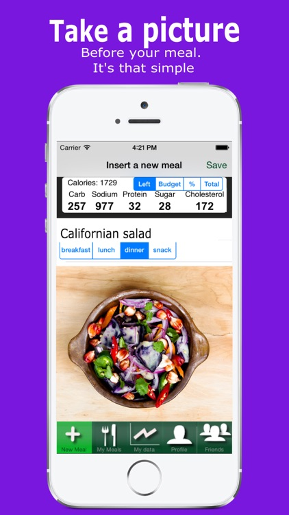Yumget visual photo food diary and diet tracker with nutrient protein fat vitamins minerals analysis