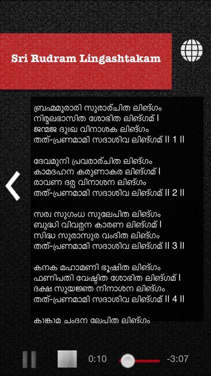 Sri Rudram screenshot-4