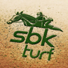 SBK Turf